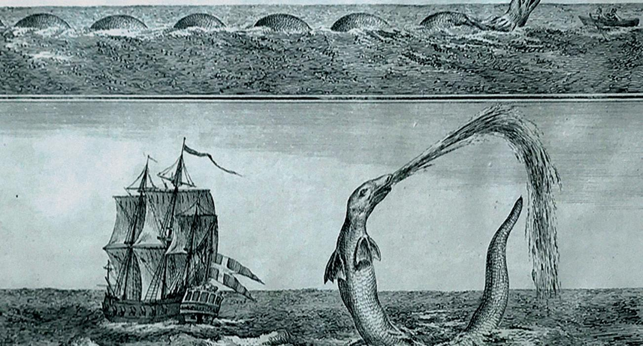 The 'great Sea Serpent' from the 1755 English edition of Bishop Erik Pontoppidan's Natural History of Norway